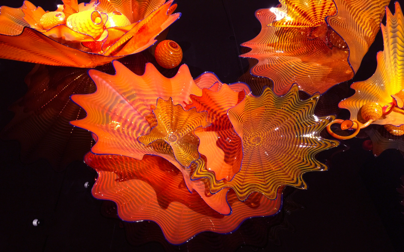 Chihuly9