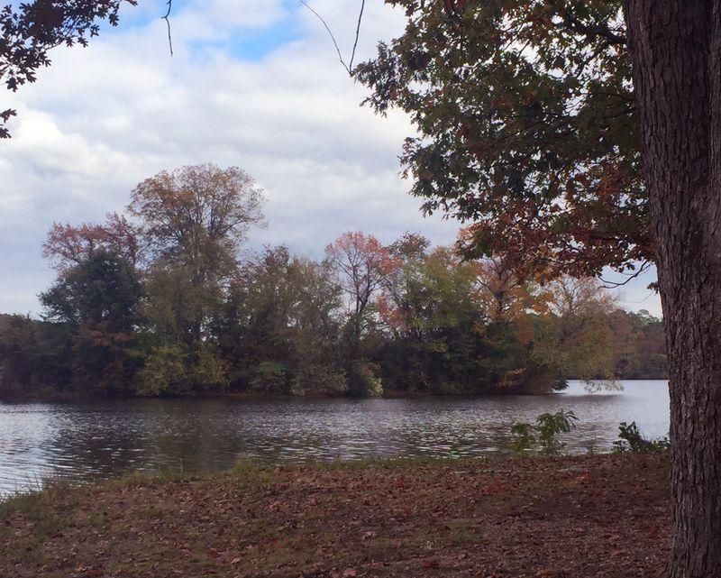 Lake Catherine Five