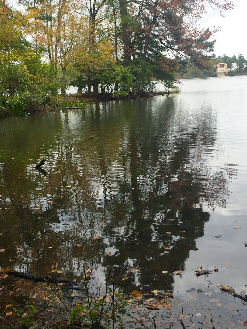 Lake Catherine Four